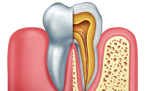 Root-Canal-Treatments.jpg